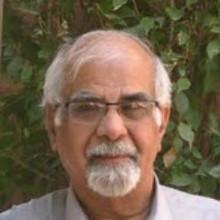 Surjit Bhalla
